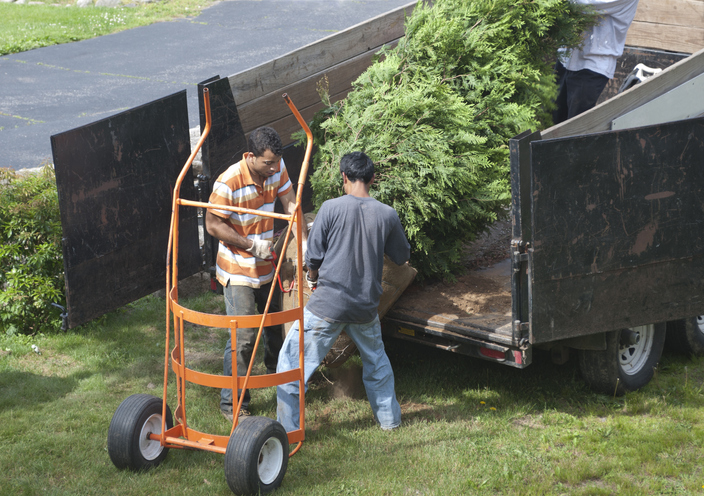 Dump Trailer Styles and Uses